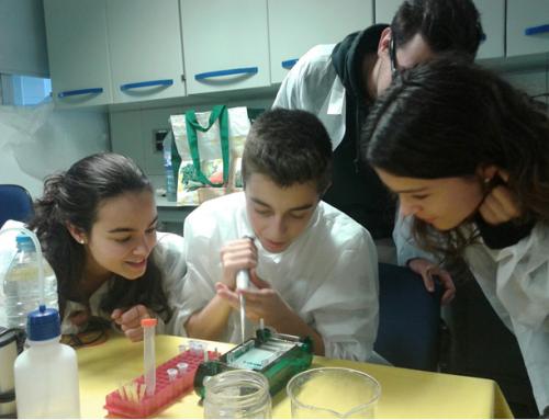 """""""Investiga un crim"""", taller sobre tecnologia de l'ADN"""