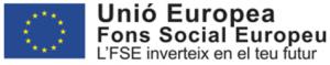 Logo Fons Social Europeu