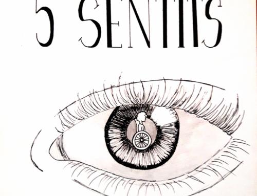 Circuits dels 5 sentits: activitat per col·laborar amb la Marató de TV3