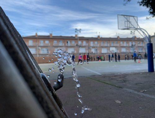 Guanyadors del concurs de fotografia Sant Tomàs 2020
