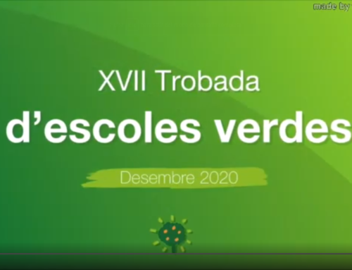El passat 10 de desembre es va celebrar, de manera virtual, la XVII Trobada d'escoles verdes